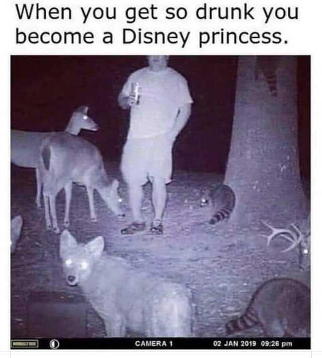animal-get-so-drunk-become-disney-princess-camera-1-02-jan-2019-0926-pm-thie.jpg