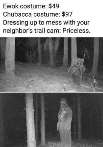 person-ewok-costume-49-chubacca-costume-97-dressing-up-mess-with-neighbors-trail-cam-priceless.jpg